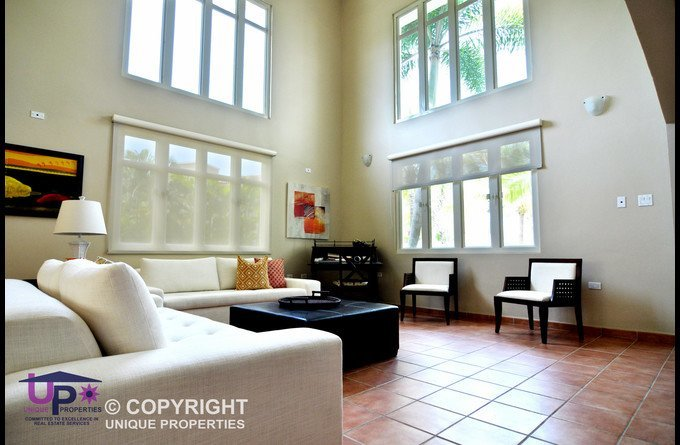 High Ceiling and light filled Living Room